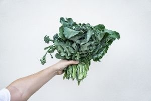 leafy greens antioxidant foods