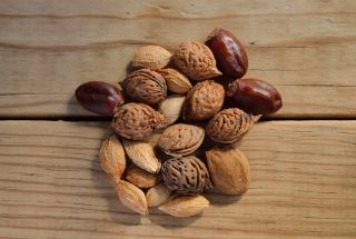 nuts for health