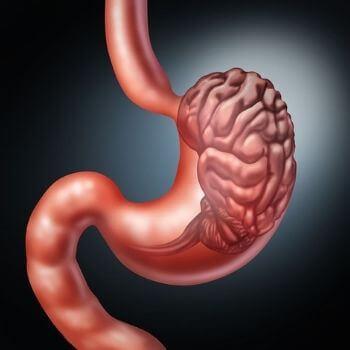 gut brain axis mental health
